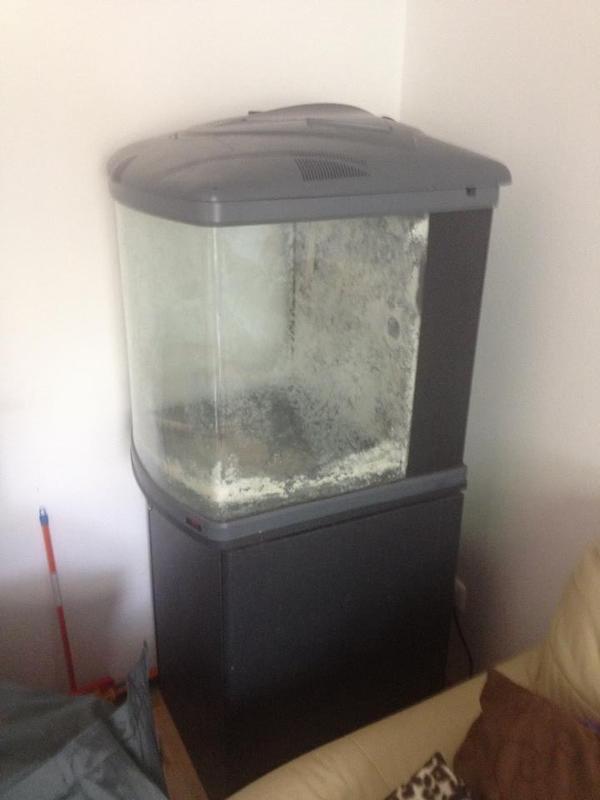 salzwasseraquarium 120l komplett und nano cube in sehr gutem zustand in f rth fische. Black Bedroom Furniture Sets. Home Design Ideas