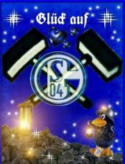 Schalke Tickets Je