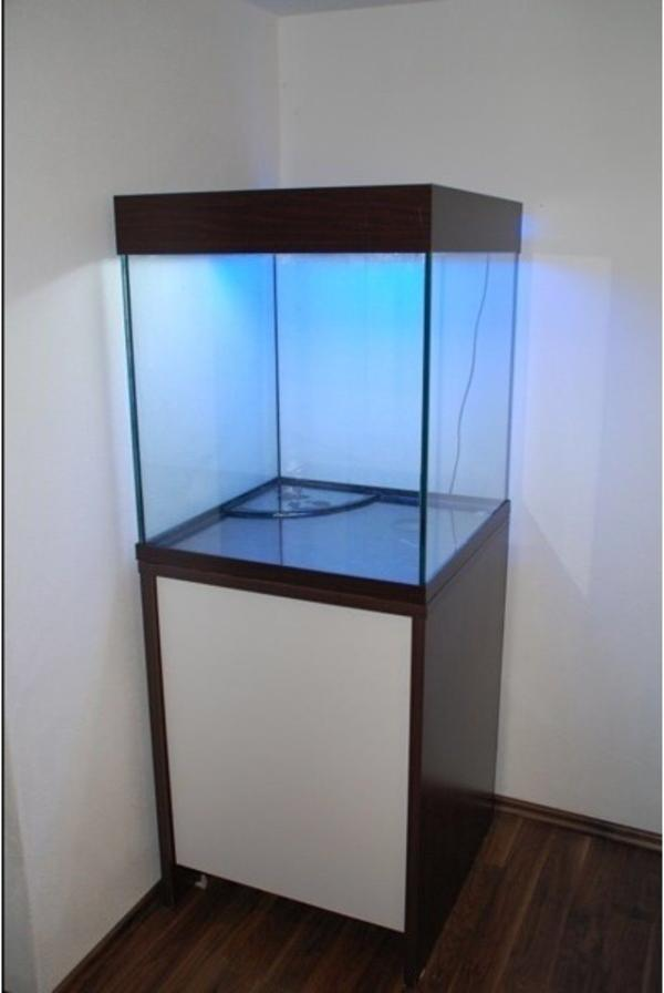 scubacube 270 aquarium w rfel. Black Bedroom Furniture Sets. Home Design Ideas