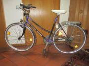 sportliches Marken Damenrad (