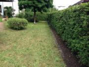 Suche erfahrene Gartenhilfe