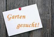 Suche Kleingarten / Schrebergarten