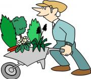 Suche Schrebergarten Gartengrundstück