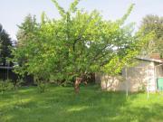 Verkaufe Garten auf