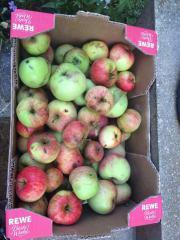 Verschenke Äpfel aus