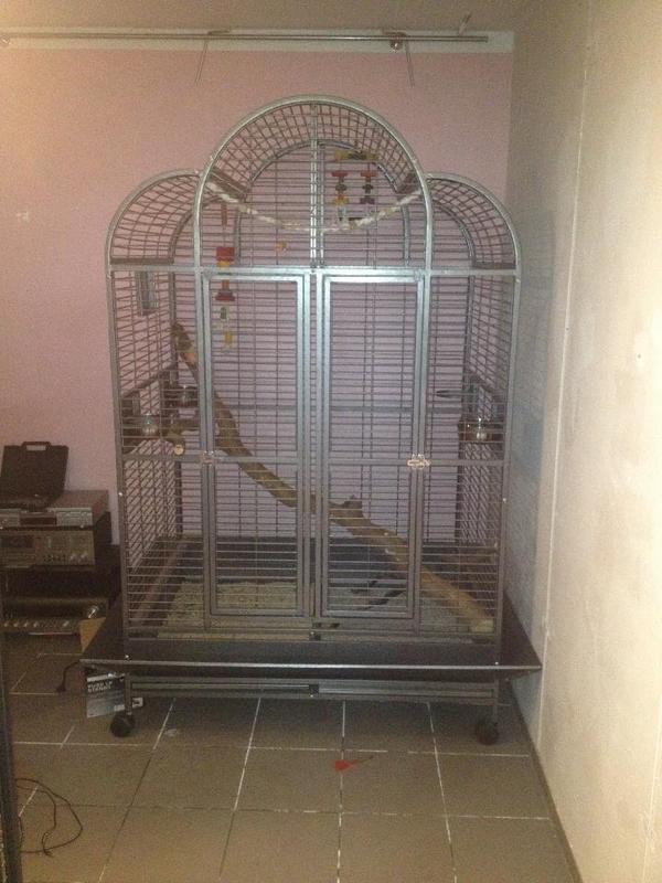 vogelk fig in lustenau zubeh r f r haustiere kaufen und verkaufen ber private kleinanzeigen. Black Bedroom Furniture Sets. Home Design Ideas
