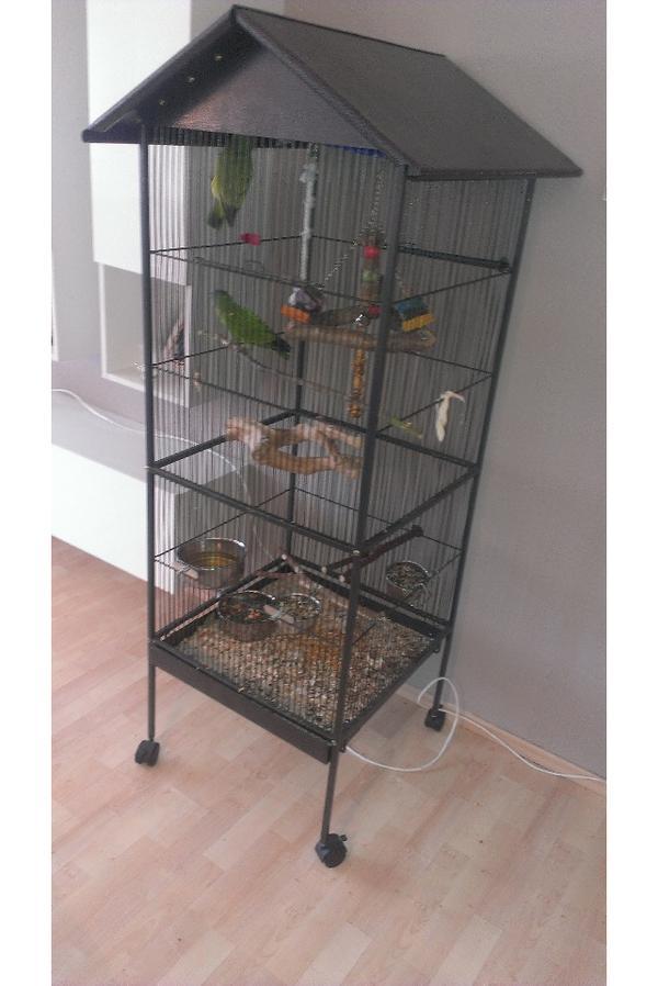 voliere k fig f r sittich und papagei in frankfurt. Black Bedroom Furniture Sets. Home Design Ideas