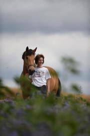 Weideplatz für Pferde