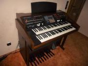 Wersi Orgel Apollo