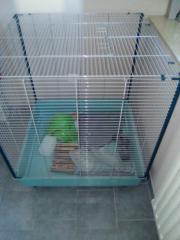 Zu Verkaufen Rattenkafig