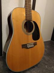 12saitige Westerngitarre Gitarre