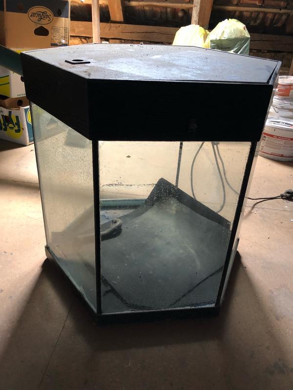 aquaristik in pforzheim bei deinetierwelt. Black Bedroom Furniture Sets. Home Design Ideas
