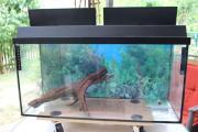 Aquarium 90 Liter
