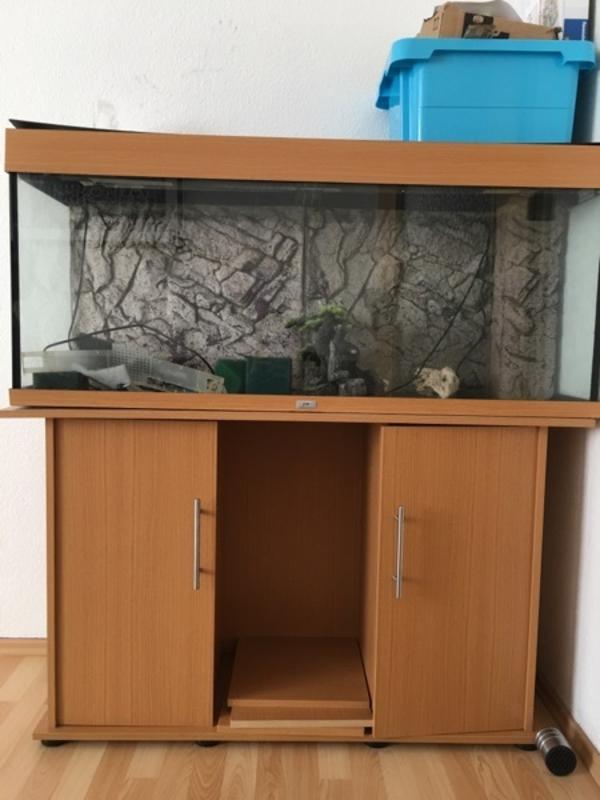 aquaristik in esslingen am neckar bei deinetierwelt. Black Bedroom Furniture Sets. Home Design Ideas