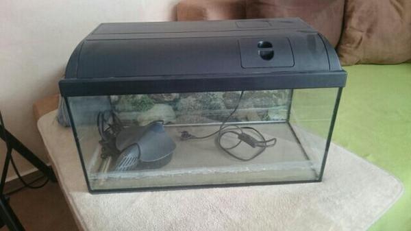 aquarium 60l kleinanzeigen tiermarkt deinetierwelt. Black Bedroom Furniture Sets. Home Design Ideas
