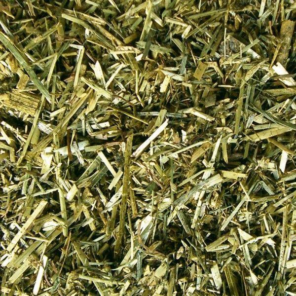 BIO - Heu gehäckselt für Senioren zu verkaufen - Breitenbrunn - BIO - Heu gehäckselt für Senioren zu verkaufenRaufutterersatz mit verschiedenen Gräsern und Kräutern. In feiner Faserform und allergenarm. Hochwertige Trockengrünfasern sichern die Rohfaserversorgung des Pferdes und ersetzen somit das  - Breitenbrunn