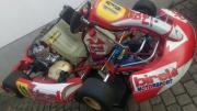 Birel TM Racing