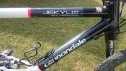 Cannondale Jekyll 800