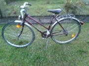 Damen-Fahrrad 28
