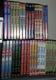 Erotik DVD aus