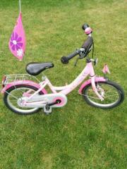 Fahrrad mit Lillifee von Pucky 16 Zoll gebraucht kaufen  Bretten