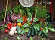 Garten - Anbaufläche - Schrebergarten -