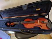 Geige für Anfänger