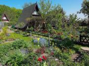 Gepflegter Kleingarten in