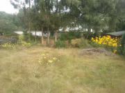 Grundstück in Wesel