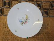 Hutschenreuther Porzellan-Teller