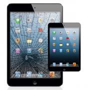 iPad Reparatur vom