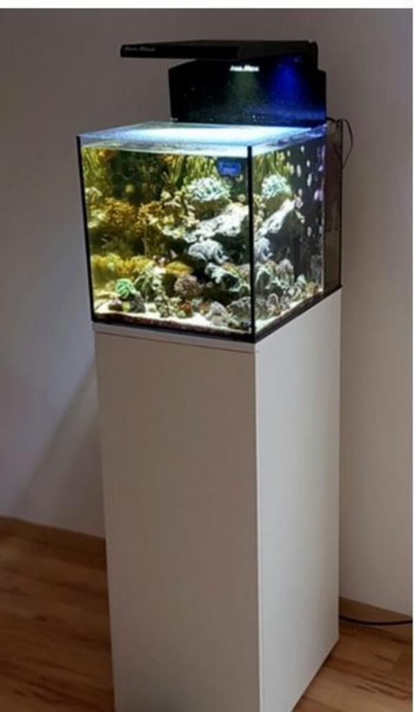 aquaristik in dreieich bei deinetierwelt. Black Bedroom Furniture Sets. Home Design Ideas