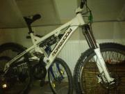 morewood downhill bike