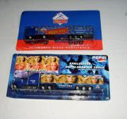 Pepsi-Shakira Truck Teigwaren-Riesa Truck
