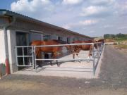 Pferdeboxen in Tiefenthal,