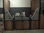 Pferdeboxen komplett mit Holzfüllung und