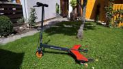 Razor Powerwing Roller;