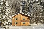 Skifahren im Bregenzerwald -