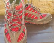 Timberland Schuhe Outdoor Gr 44-45