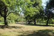 Wochenendgrundstück, Obstwiese, Gartengrundstück